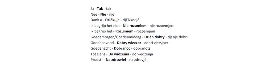 Poolse woordjes
